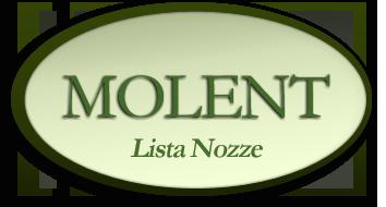 Molent logo